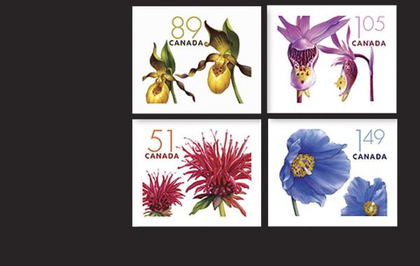 Timbres portant sur Les fleurs cultivées et indigènes du Canada.